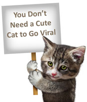 cat holding sign - cute cat to go viral
