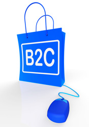Sales for B2C Business to Consumer shopping online stores online payment