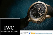 International Watch Company IWC